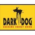 Casquette Dark dog limited edition