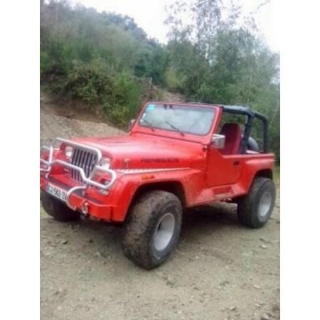 Jeep YJ de Stéphane