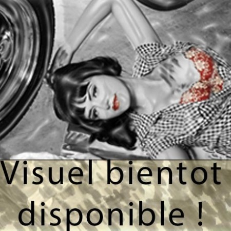 BOUCHONS DE VALVE DODGE LOGO GRAND MODELE